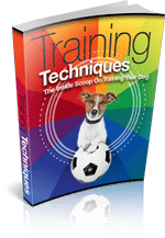 TrainingTechniques mrr1 Training Techniques