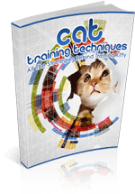 CatTrainingTech mrr1 Cat Training Techniques