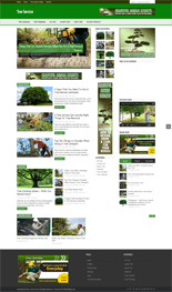 TreeServiceBlog_p