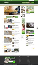 CarpetCleanersBlog_p