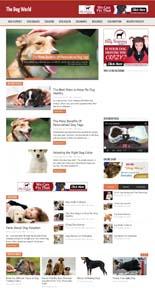 DogWorldBlog_pflip