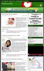 PregnancyNicheBlog_plr