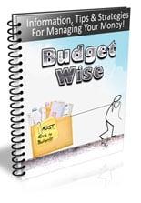BudgetWiseNewsletter_plr