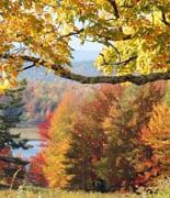 NewEnglandFoliage_puo