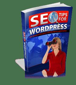SEO-Tips-For-WordPress-250