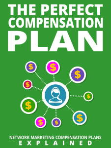 the-perfect-compensation-plan-226×300