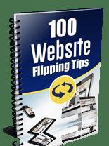 100WebsiteFlippingTips_plr