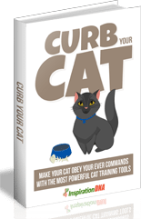 CurbYourCat mrr Curb Your Cat