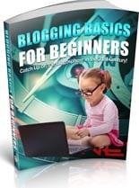 BlogBasicsBeginners plr Blogging Basics For Beginners