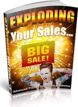 ExplodingYourSales plr Exploding Your Sales