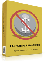 LaunchingNonProfit p Launching A Non Profit