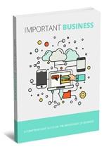 ImportantBusiness mrrg Important Business