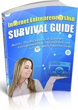 IntEntSurvivalGuide plr Internet Entrepreneurship Survival Guide
