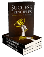 SuccessPrinciples mrr Success Principles