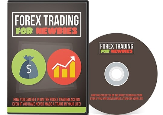 Forex Trading For Newbies Forex Trading For Newbies