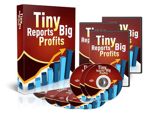TinyReportsBigProfits Tiny Reports Big Profits