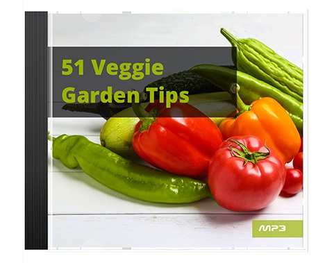 51 Veggie Garden Tips Audio Book Plus Ebook 51 Veggie Garden Tips Audio Book Plus Ebook
