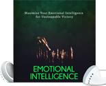 EmotionalIntelligence mrr Emotional Intelligence