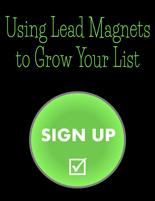 LeadMagnetsGrowList plr Using Lead Magnets to Grow Your List