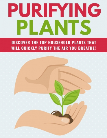 Purifying Plants Purifying Plants